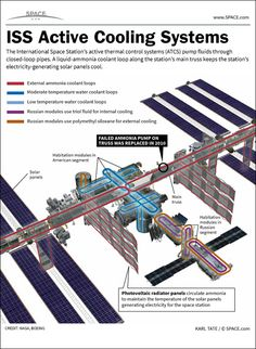International Space Station's Cooling System: How It Works (Infographic) by Karl Tate, SPACE.com Infographics Artist