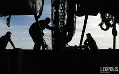 Fishing on the North Sea  #Fishing #peche #sea #mer #net #filet seaboat #north #nord #Leopolismagazine #LPM #photojournalism #editorial