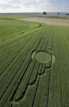 2010 The ancient Annunaki winged disc appears in a modern crop circle.