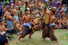 """Have you ever heard about """"Perang Pandan"""", Horisoners? Pandan war or also called Mekaré-kare is an annual event held by Tenganan Pegringsingan Village – the original Balinese village (calledBali Aga), as a symbol of respect to Lord Indra who became the god of war as the society's belief and the protector of their village. The namePandan war is taken from the war weapon that were used, a thorny pandan branch and also use a shield as a means of protection. Each participant battles each…"""