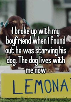 """""""I broke up with my boyfriend when I found out he was starving his dog. The dog lives with me now"""""""