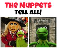 The Muppets TELL ALL!