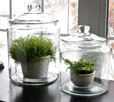 This would be awesome in my windowsills and would protect the wood!!!