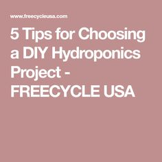5 Tips for Choosing a DIY Hydroponics Project - FREECYCLE USA