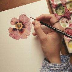 pretty flower: