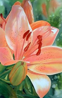 Consider the Lilies - watercolor by ©Dee Tunseth http://deetunseth.com/workszoom/685251/consider-the-lilies