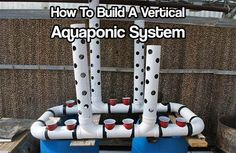Easy-build, gravity-based, PVC aquaponic system – DIY projects for everyone! Hydroponic Farming, Aquaponics Greenhouse, Hydroponic Growing, Aquaponics Diy, Hydroponics System, Birthday Deals, Build Outdoor Kitchen, Raised Planter, Plant Growth