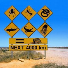 Australian Road Sign. On second thought, maybe winter wasn't all that bad. lol