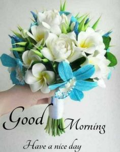 Good Morning Beautiful Pictures, Good Night Love Images, Good Morning Picture, Morning Pictures, Good Morning Thursday Images, Good Morning Greetings, Telugu Inspirational Quotes, M Image, Good Night Wishes