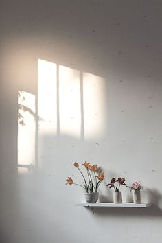 Simple and Serene Living: soft light