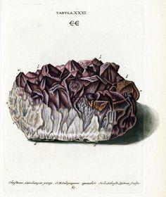 Resultado de imagen para illustrations geology