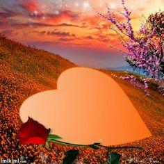 Love in Flower