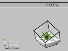 Soho Dining Room - Agave Plant Terrarium Found in TSR Category 'Sims 4 Plants'