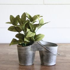 Rustic Double Planter Buckets With Handle