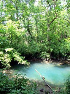 McConnell springs, Lexington, Kentucky.