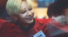 Woozi, Wonwoo, Jeonghan Seventeen, Pledis 17, Seungkwan, Bias Wrecker, Korean Actors, Call Me, Insight