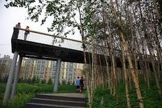 Image result for  Stormwater Wetland Park