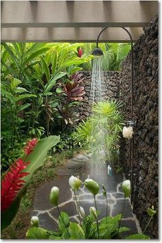 Indoor Container Gardening How to grow a tropical garden.beautiful outdoor shower - If you live in a house and you have at least small space called garden / backyard, you are lucky person. When you want to escape from the crowd, the Outdoor Bathrooms, Outdoor Baths, Outdoor Rooms, Outdoor Gardens, Outdoor Living, Outdoor Bedroom, Outdoor Kitchens, Outdoor Plants, Indoor Outdoor