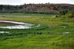 kanopolis-drought-aug12-11 by Mike Rodriquez, via Flickr
