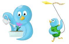 Happy Spring Time! #socialmedia #twitterbirds