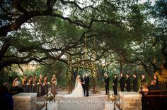 Gorgeous arch full of roses and greenery Whim Florals Camp Lucy Sacred Oaks Wedding Photography in Dripping Springs, TX   Matt Montalvo Photography