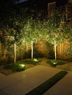 Add the finishing touch to your exterior spaces with well-planned outdoor landscape lighting. Add the finishing touch to your exterior spaces with well-planned outdoor landscape lighting. Modern Landscape Lighting, Landscape Design, Landscape Architecture, Modern Landscaping, Outdoor Landscaping, Landscaping With Trees, Modern Backyard, Outdoor Garden Lighting, Outdoor Gardens