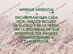 """¿CUÁL ES EL ÁNGEL CORRECTO EN ESTE MOMENTO?  Piensa sobre el tipo de ángel que necesitas en tu vida en este momento. Existen ángeles para todo lo que necesitas. Si conoces al ángel a cargo de un área en particular o el ángel con la habilidad o el conocimiento que necesitas, invócalo específicamente. De lo contrario, está bien con tan sólo decir que el """"ángel correcto"""" te ayude. Ten la seguridad de que así ya es y así será.  #UniversoDeAngeles www.facebook.com/UniversoAngeles"""