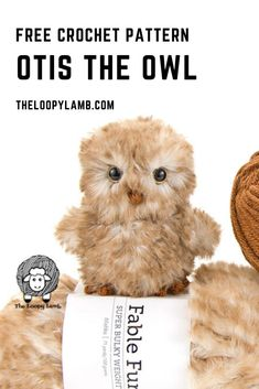 Adorable Crochet Owl Free Pattern from The Loopy Lamb Crochet Owls, Crochet Motifs, Crochet Amigurumi Free Patterns, Crochet Animal Patterns, Stuffed Animal Patterns, Cute Crochet, Crochet Animals, Crochet Hearts, Crochet Food