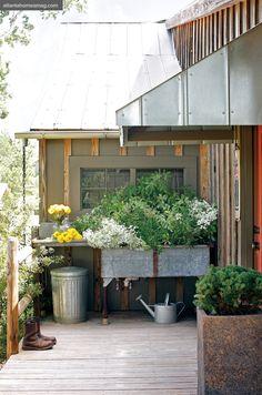 galvanized sink as planter