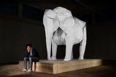 WHITE ELEPHANT - La boite verte