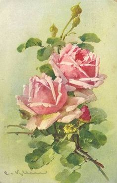 <3<3<3 Catherine Klein postcards