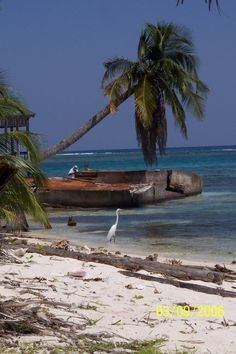 Placencia Belize - My favorite place in Central America