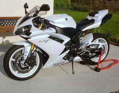 White Stallion R1