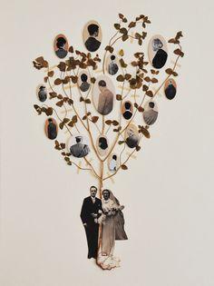 MAISSA TOULET • arbre généalogique