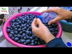 - YouTube Homemade Beauty Products, Eminem, Blueberry, Fruit, Youtube, Food, Wordpress Theme, How To Make, Atelier