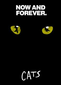 Cats (Broadway) posters for sale online. Buy Cats (Broadway) movie posters from Movie Poster Shop. We're your movie poster source for new releases and vintage movie posters. Broadway Quotes, Broadway Posters, Broadway Theatre, Musical Theatre, Broadway Shows, Broadway Plays, Cat Posters, Movie Posters, Theatre Posters
