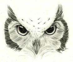 Owl Eye Tattoo, Owl Tattoo Drawings, Nape Tattoo, Bird Drawings, Tattoo Sketches, Animal Drawings, Owl Tattoo Design, Tattoo Designs, Realistic Owl Tattoo