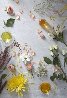 Flat lay photography ideas | Inspiration for flatly | flowers for floral products | Picking the Perfect Perfume