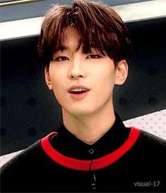 Wonwoo Is Beautiful Joshua Seventeen, Seventeen Debut, Woozi, Jeonghan, Seo Kang Joon, Mingyu Seventeen, Adore U, Kpop Guys, Pop Bands