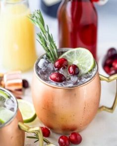 5 of the BEST Dry Rub Recipes for Chicken | Joyful Healthy Eats Refreshing Cocktails, Easy Cocktails, Bourbon Cocktails, Spiked Eggnog, Homemade French Fries, Cranberry Cocktail, Gin Cocktail Recipes, Frozen Cranberries