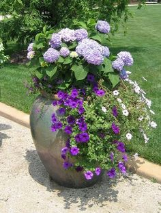 Pretty shades of purple container: