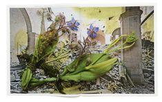 http://laurenceaegerter.com/portfolio-item/healing-plants-for-hurt-landscapes-book/