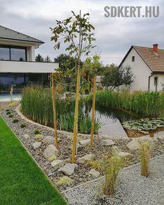 #gardening #gardendesign #kerttervezés #kerttervező #kertépítésbudapest Land Scape, Garden Design, Arch, Sidewalk, Outdoor Structures, Modern, Plants, Instagram, Gardening