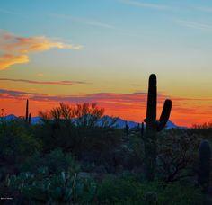 SOLD! Enjoy this view every evening in your new SkyRanch home near Dove Mountain, in Marana, AZ.  4443 W Crystal Ranch Pl, Marana, AZ.  $275,000