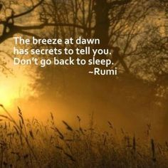 Rumi Poems Archives - Posts from the Path