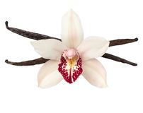 Vanilla Flower And Vanilla Pods - Download From Over 54 Million High Quality Stock Photos, Images, Vectors. Sign up for FREE today. Image: 29066242