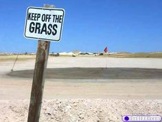 roger that...ok...errrr, is the guy that put this up did he think there was grass?