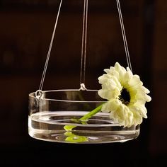 Crystal Hanging Clear Glass Vase Flower Planter Terrarium Hydroponic Container #Country