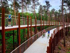 Breeze Through the Forest Canopy on a Spiraled Bike Path in Belgium Park Landscape, Forest Landscape, Landscape Design, Architecture Concept Drawings, Landscape Architecture, Classical Architecture, Ancient Architecture, Sustainable Architecture, Forest Resources