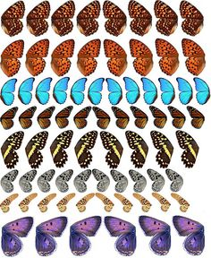 free printable Butterfly Wings 3 by emilynnn, via Flickr
